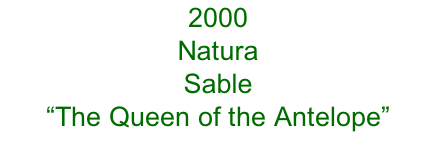 "2000 Natura Sable  ""The Queen of the Antelope"""